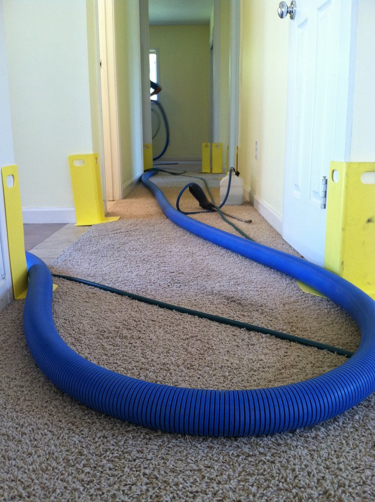 Keeping Your Carpets Smelling Fresh in Upland Odor and Spot Elimination