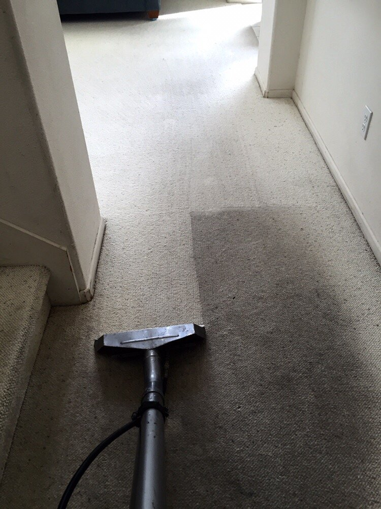 Most Effective Tips And Tricks For The Best Carpet Cleaning in Upland