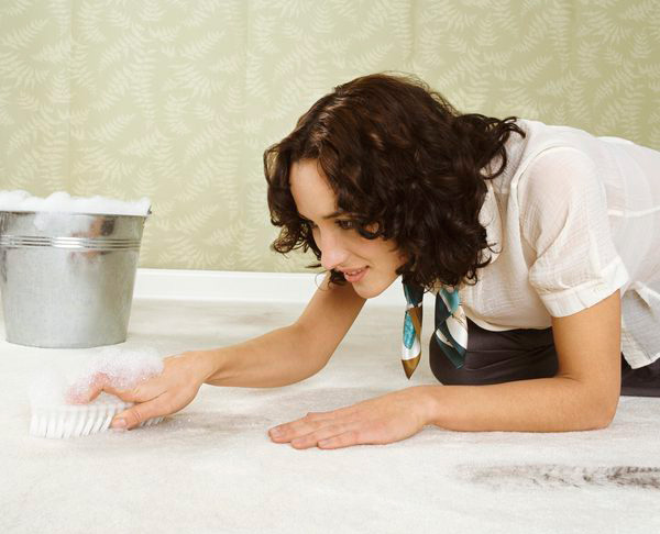 Pet Odor and Stain Carpet Cleaning Service Upland Carpet and Area Rug Cleaning