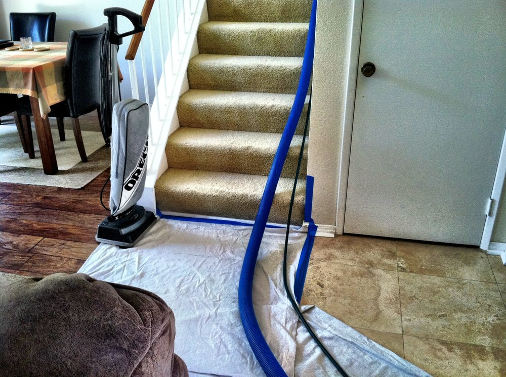Stain Removal Tips Carpet Cleaning Easy D.I.Y. Cleaning Tips in Upland