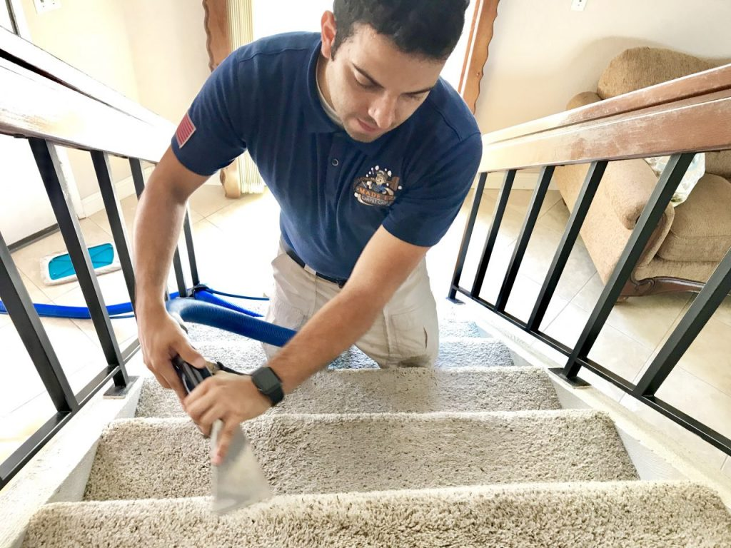 Carpet Cleaning Services in Upland County